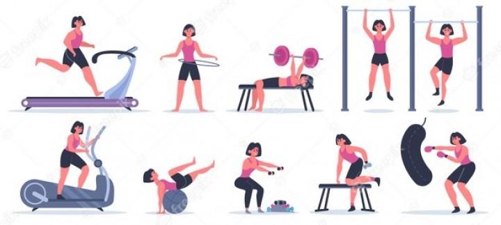 School Gym Arrangements